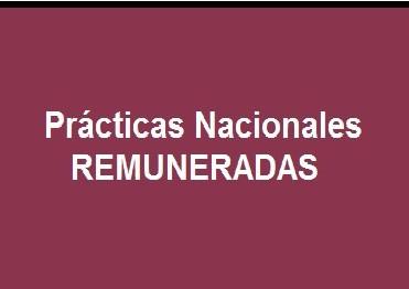 Prácticas Nacionales Remuneradas 2
